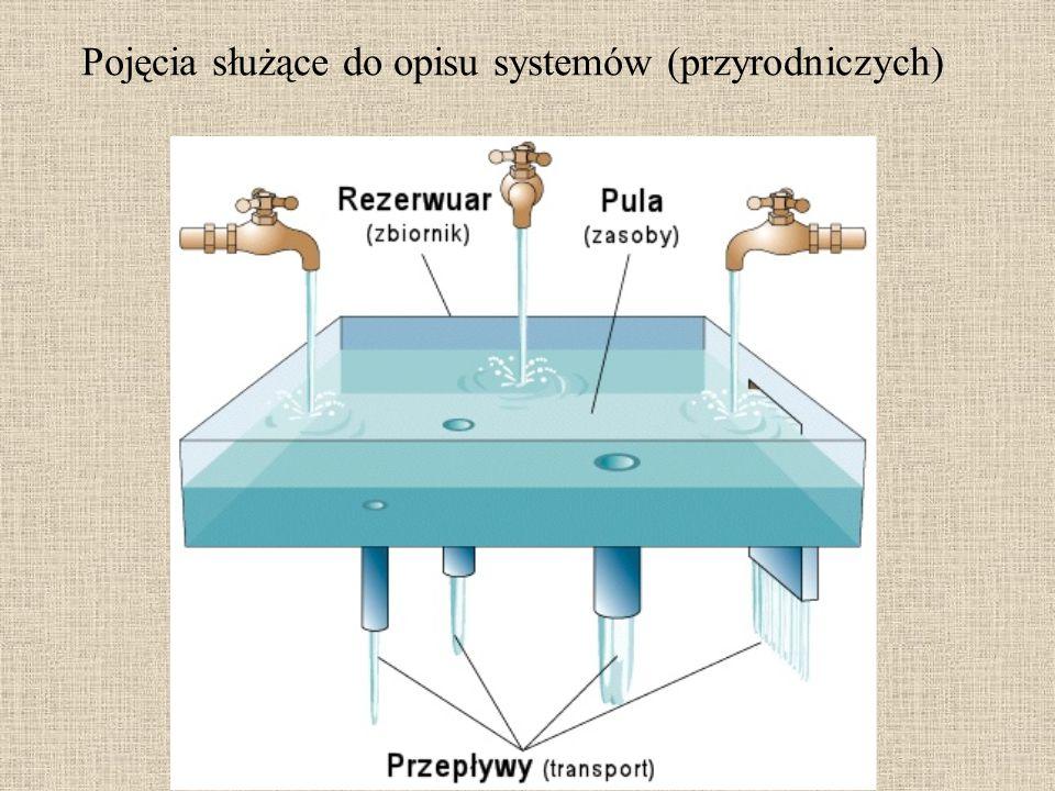 Pojęcia służące do opisu systemów (przyrodniczych)