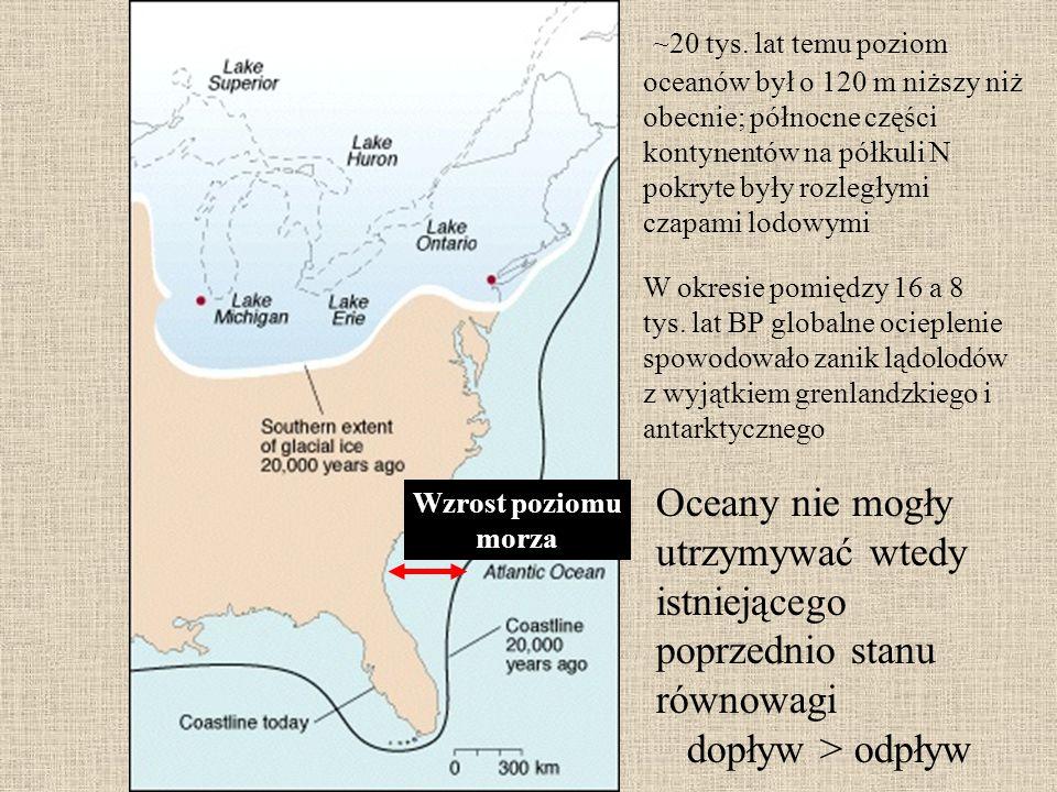 ~20 tys. lat temu poziom oceanów był o 120 m niższy niż obecnie; północne części kontynentów na półkuli N pokryte były rozległymi czapami lodowymi W o