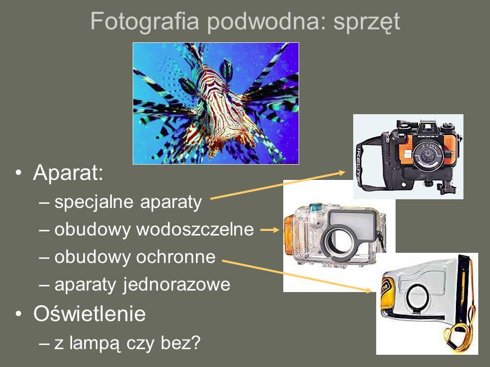 Fotografia podwodna: sprzęt Aparat: –specjalne aparaty –obudowy wodoszczelne –obudowy ochronne –aparaty jednorazowe Oświetlenie –z lampą czy bez?