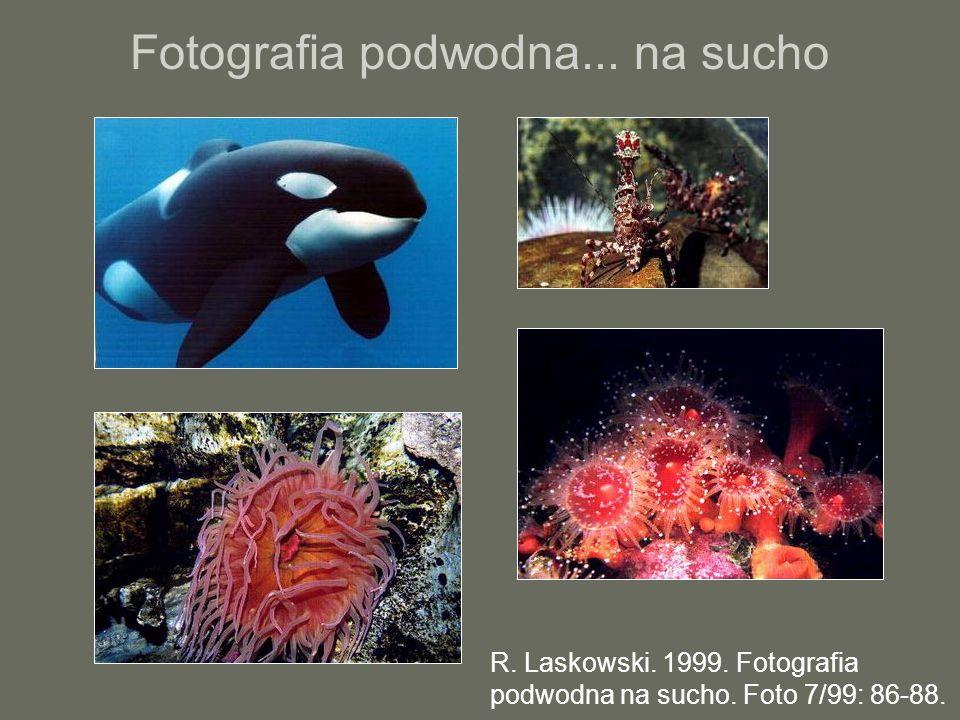 Fotografia podwodna... na sucho R. Laskowski. 1999. Fotografia podwodna na sucho. Foto 7/99: 86-88.