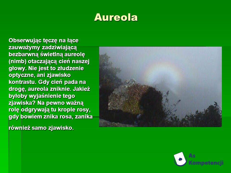 Aureola Obserwując tęczę na łące zauważymy zadziwiającą bezbarwną świetlną aureolę (nimb) otaczającą cień naszej głowy. Nie jest to złudzenie optyczne