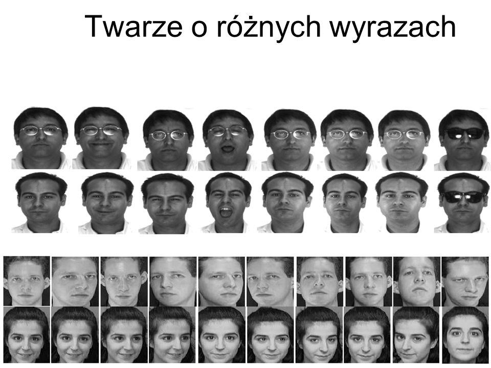 Rozpoznawanie twarzy Ilustracja problemów: różnic oświetlenia (a), pozy (b) wyrazu twarzy (c)