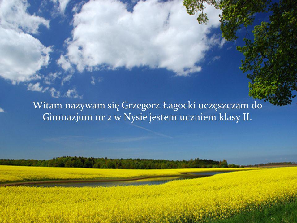 Witam nazywam się Grzegorz Łagocki uczęszczam do Gimnazjum nr 2 w Nysie jestem uczniem klasy II.