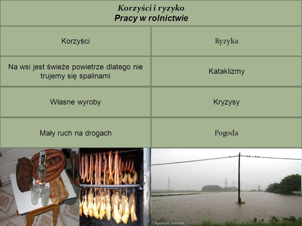 Wszystkie obrazki zostały skopiowane z www.google.pl www.google.pl Teksty własne