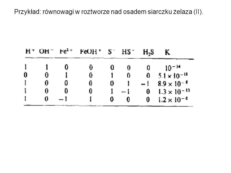 Przykład: równowagi w roztworze nad osadem siarczku żelaza (II).