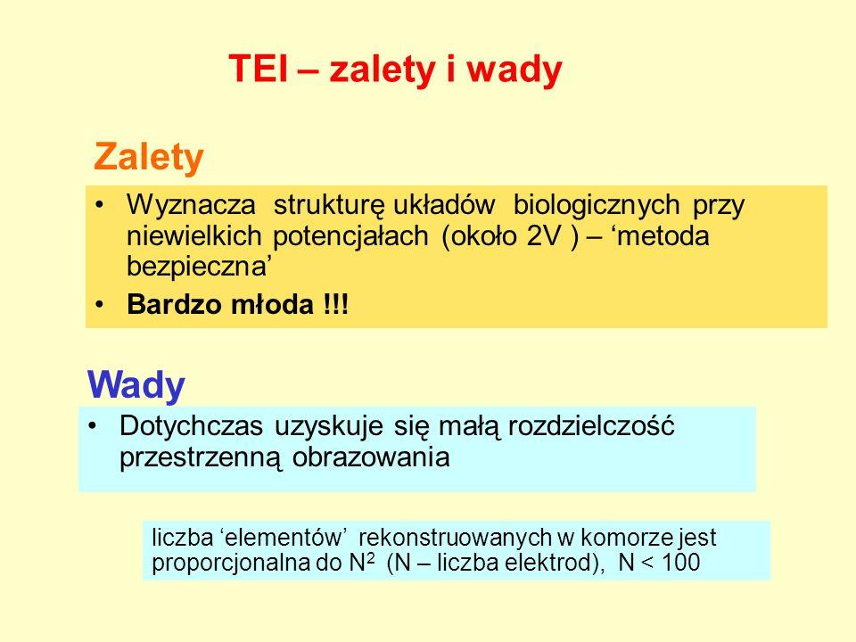 TEI – zalety i wady Wyznacza strukturę układów biologicznych przy niewielkich potencjałach (około 2V ) – 'metoda bezpieczna' Bardzo młoda !!! Zalety W