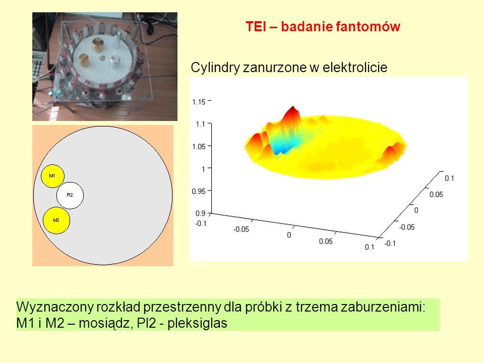 Wyznaczony rozkład przestrzenny dla próbki z trzema zaburzeniami: M1 i M2 – mosiądz, Pl2 - pleksiglas TEI – badanie fantomów Cylindry zanurzone w elek
