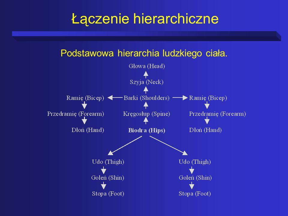 Łączenie hierarchiczne Podstawowa hierarchia ludzkiego ciała.