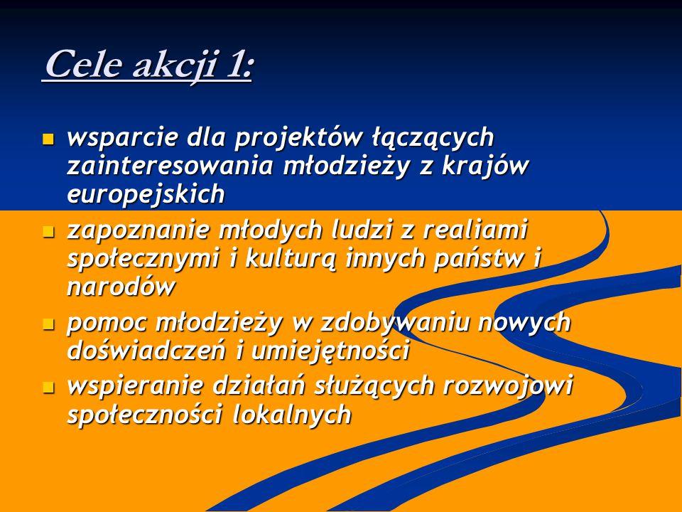 Cele akcji 1: wsparcie dla projektów łączących zainteresowania młodzieży z krajów europejskich wsparcie dla projektów łączących zainteresowania młodzi