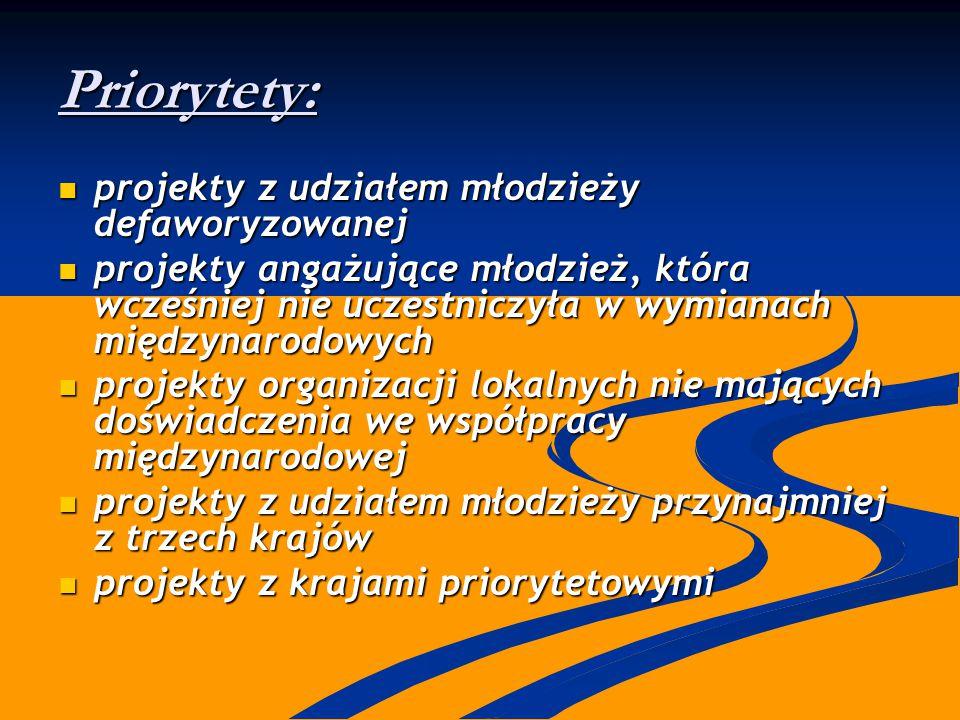 Priorytety: projekty z udziałem młodzieży defaworyzowanej projekty z udziałem młodzieży defaworyzowanej projekty angażujące młodzież, która wcześniej
