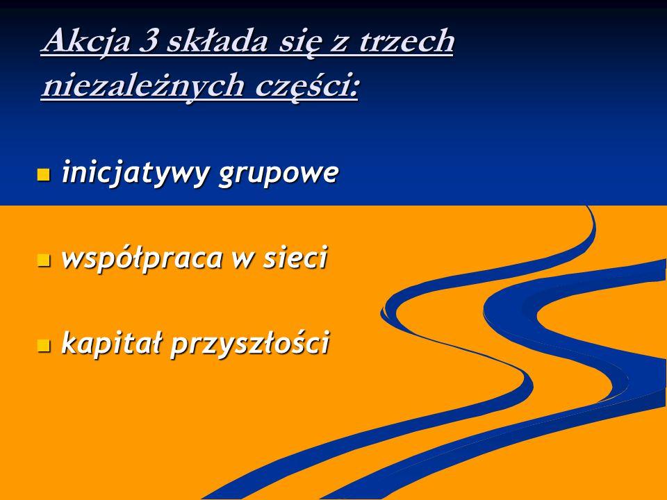 Akcja 3 składa się z trzech niezależnych części: inicjatywy grupowe inicjatywy grupowe współpraca w sieci współpraca w sieci kapitał przyszłości kapit