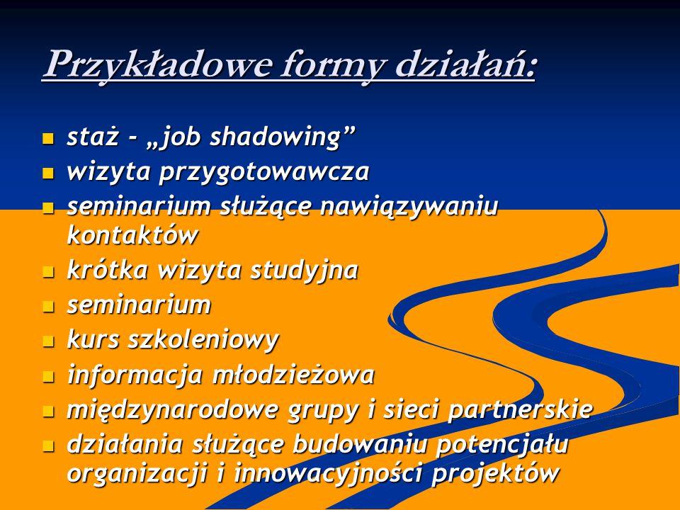 """Przykładowe formy działań: staż - """"job shadowing"""" staż - """"job shadowing"""" wizyta przygotowawcza wizyta przygotowawcza seminarium służące nawiązywaniu k"""