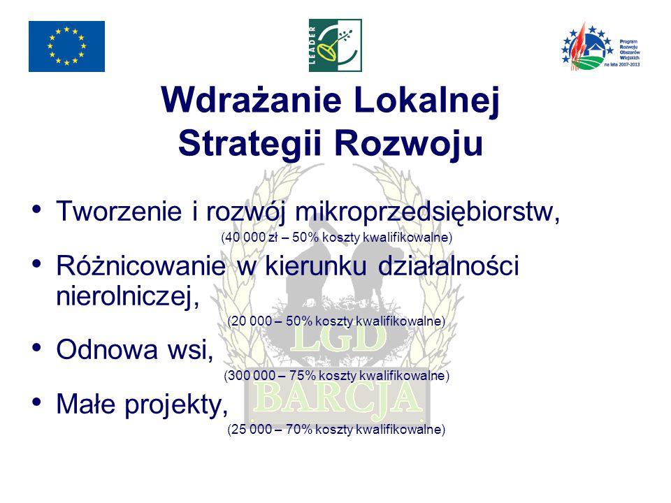 Wdrażanie Lokalnej Strategii Rozwoju Tworzenie i rozwój mikroprzedsiębiorstw, (40 000 zł – 50% koszty kwalifikowalne) Różnicowanie w kierunku działalności nierolniczej, (20 000 – 50% koszty kwalifikowalne) Odnowa wsi, (300 000 – 75% koszty kwalifikowalne) Małe projekty, (25 000 – 70% koszty kwalifikowalne)