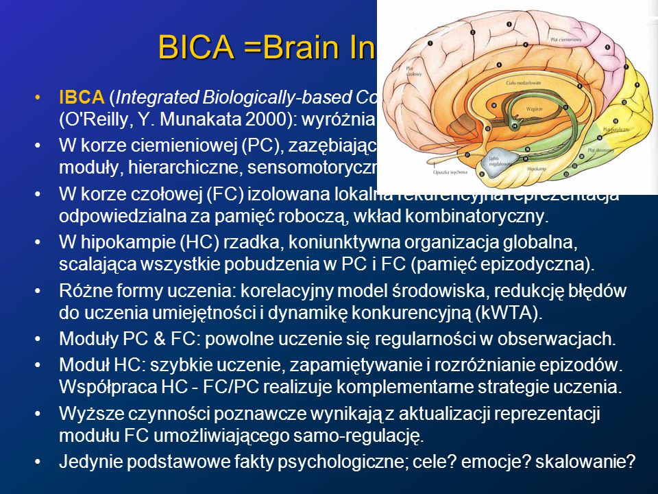 BICA =Brain Inspired CA IBCA (Integrated Biologically-based Cognitive Architecture), (O'Reilly, Y. Munakata 2000): wyróżnia 3 typy pamięci. W korze ci
