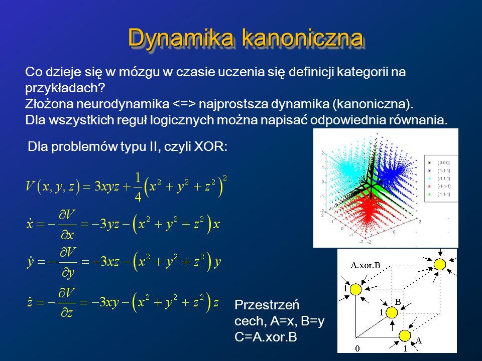 Dynamika kanoniczna Co dzieje się w mózgu w czasie uczenia się definicji kategorii na przykładach.