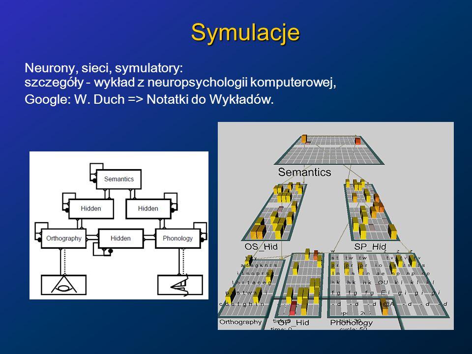 Symulacje Neurony, sieci, symulatory: szczegóły - wykład z neuropsychologii komputerowej, Google: W.