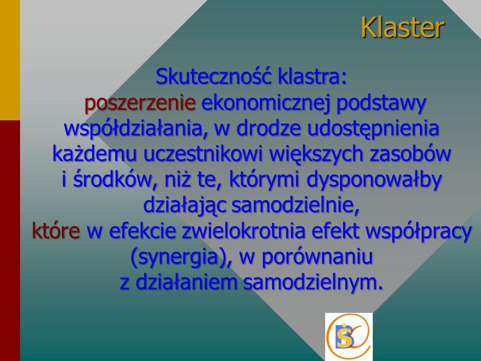 Klaster Skuteczność klastra: poszerzenie ekonomicznej podstawy współdziałania, w drodze udostępnienia każdemu uczestnikowi większych zasobów i środków, niż te, którymi dysponowałby działając samodzielnie, które w efekcie zwielokrotnia efekt współpracy (synergia), w porównaniu z działaniem samodzielnym.