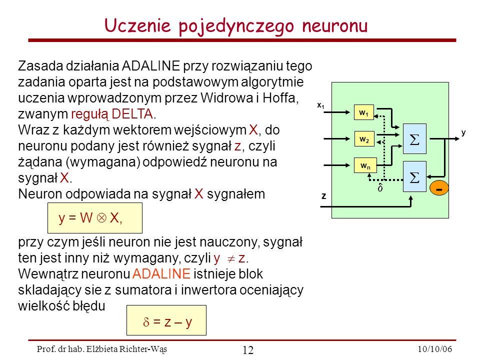 10/10/06 12 Prof.dr hab.