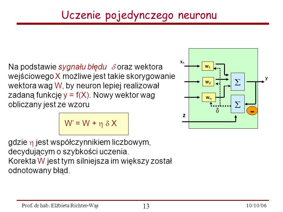 10/10/06 13 Prof.dr hab.