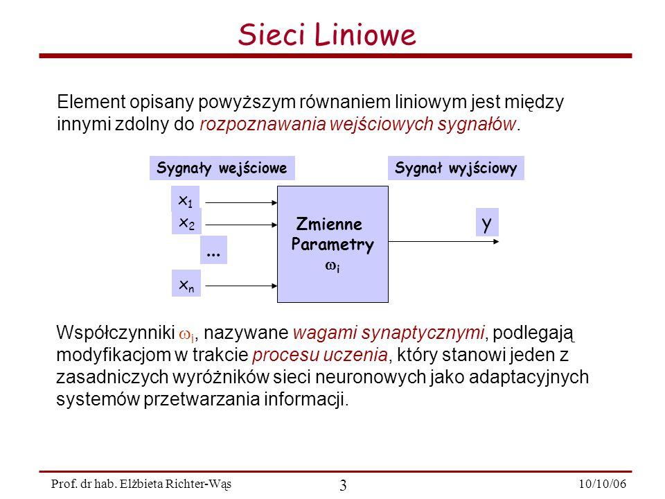 10/10/06 14 Prof.dr hab. Elżbieta Richter-Wąs Wprowadźmy pojecie ciągu uczącego.