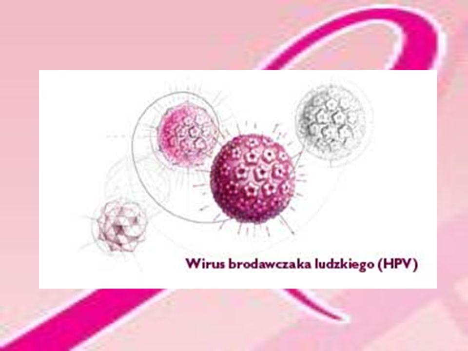 Jak przenosi się wirus HPV.