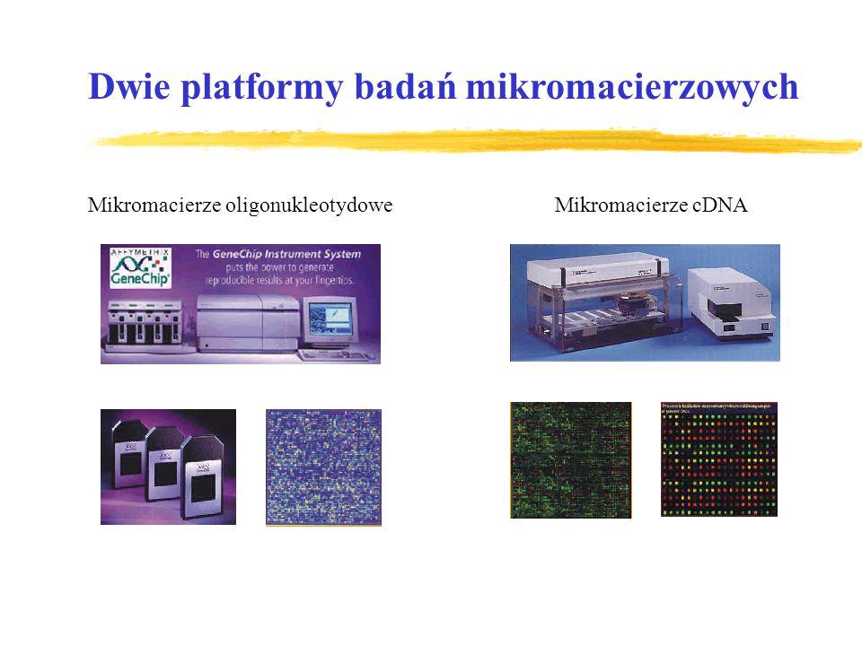 Dwie platformy badań mikromacierzowych Mikromacierze oligonukleotydoweMikromacierze cDNA