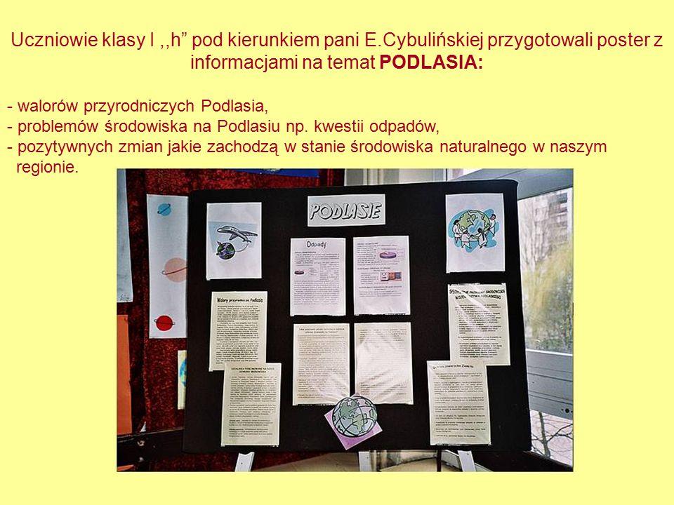 """Uczniowie klasy I,,h"""" pod kierunkiem pani E.Cybulińskiej przygotowali poster z informacjami na temat PODLASIA: - walorów przyrodniczych Podlasia, - pr"""
