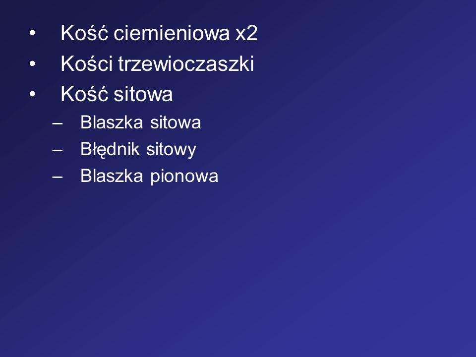 Kość ciemieniowa x2 Kości trzewioczaszki Kość sitowa –Blaszka sitowa –Błędnik sitowy –Blaszka pionowa