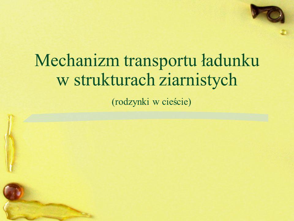 Mechanizm transportu ładunku w strukturach ziarnistych (rodzynki w cieście)