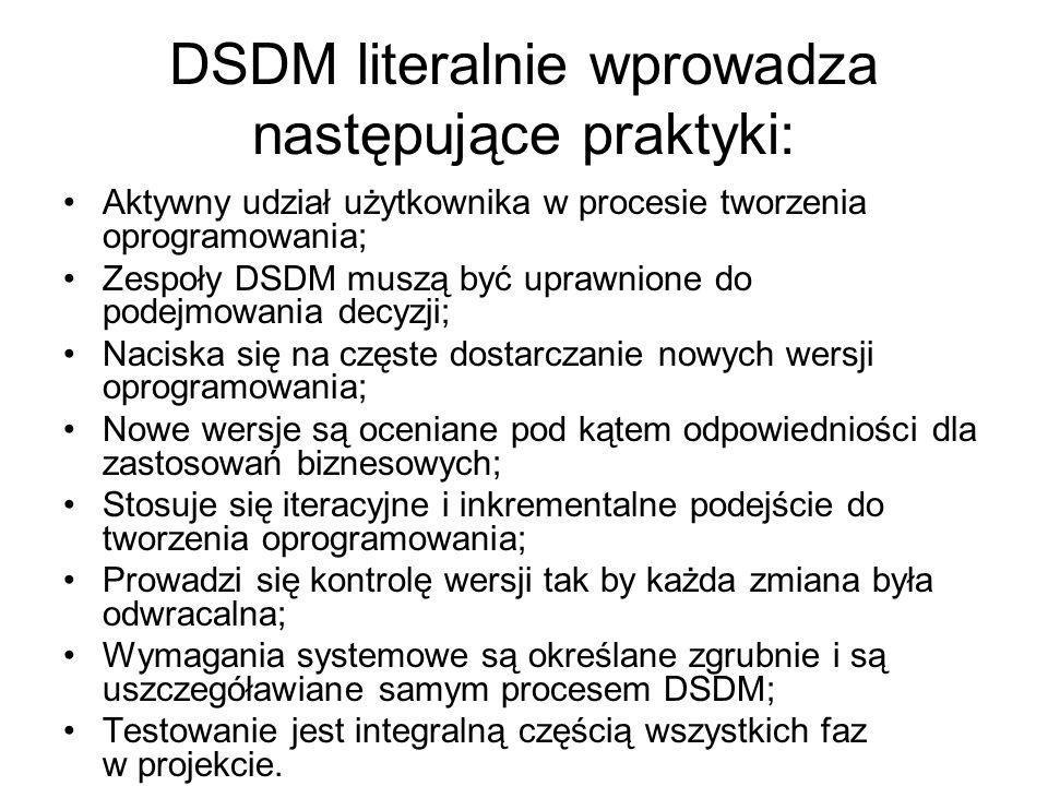 DSDM literalnie wprowadza następujące praktyki: Aktywny udział użytkownika w procesie tworzenia oprogramowania; Zespoły DSDM muszą być uprawnione do podejmowania decyzji; Naciska się na częste dostarczanie nowych wersji oprogramowania; Nowe wersje są oceniane pod kątem odpowiedniości dla zastosowań biznesowych; Stosuje się iteracyjne i inkrementalne podejście do tworzenia oprogramowania; Prowadzi się kontrolę wersji tak by każda zmiana była odwracalna; Wymagania systemowe są określane zgrubnie i są uszczegóławiane samym procesem DSDM; Testowanie jest integralną częścią wszystkich faz w projekcie.
