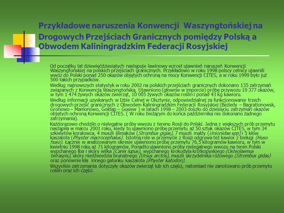 Przykładowe naruszenia Konwencji Waszyngtońskiej na Drogowych Przejściach Granicznych pomiędzy Polską a Obwodem Kaliningradzkim Federacji Rosyjskiej O