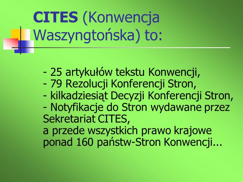 CITES (Konwencja Waszyngtońska) to: - 25 artykułów tekstu Konwencji, - 79 Rezolucji Konferencji Stron, - kilkadziesiąt Decyzji Konferencji Stron, - No