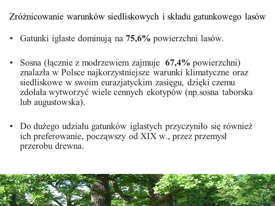 Zróżnicowanie warunków siedliskowych i składu gatunkowego lasów Gatunki iglaste dominują na 75,6% powierzchni lasów. Sosna (łącznie z modrzewiem zajmu