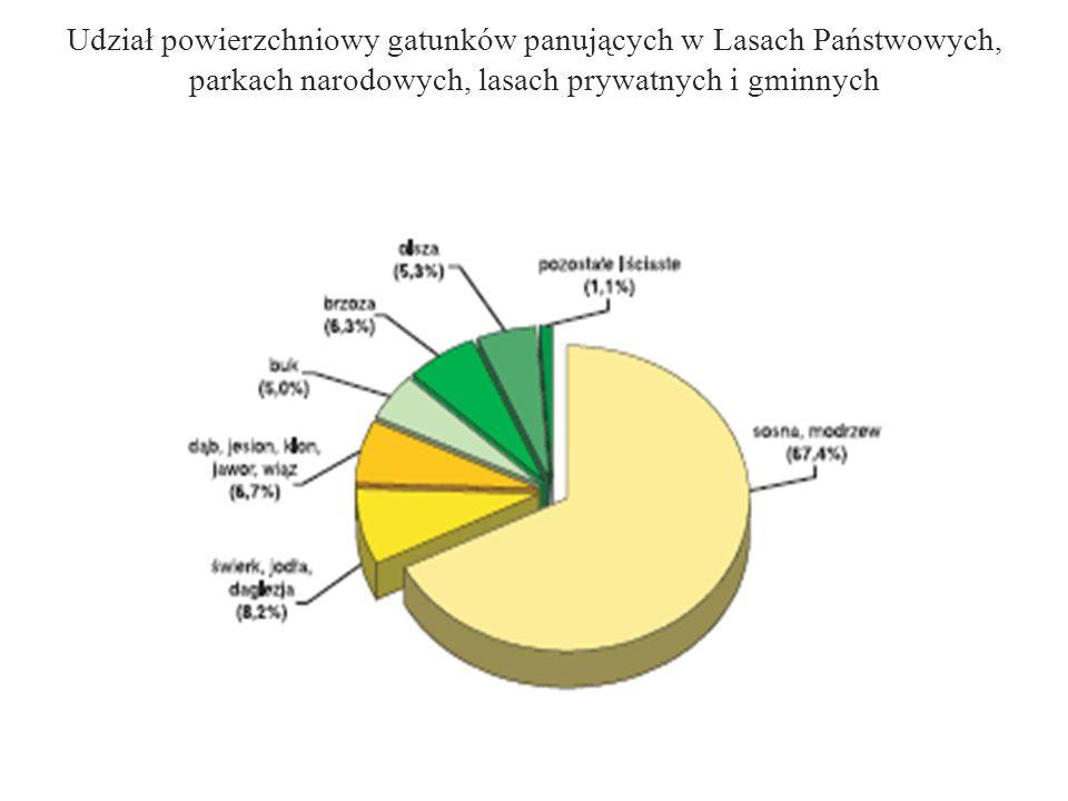 Udział powierzchniowy gatunków panujących w Lasach Państwowych, parkach narodowych, lasach prywatnych i gminnych