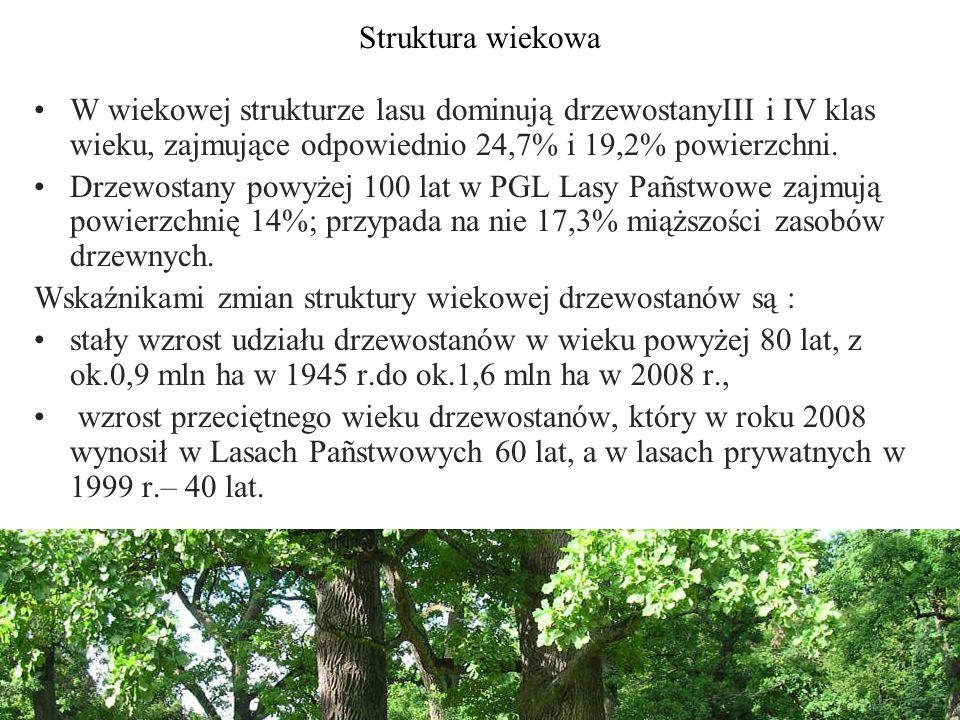 Struktura wiekowa W wiekowej strukturze lasu dominują drzewostanyIII i IV klas wieku, zajmujące odpowiednio 24,7% i 19,2% powierzchni.