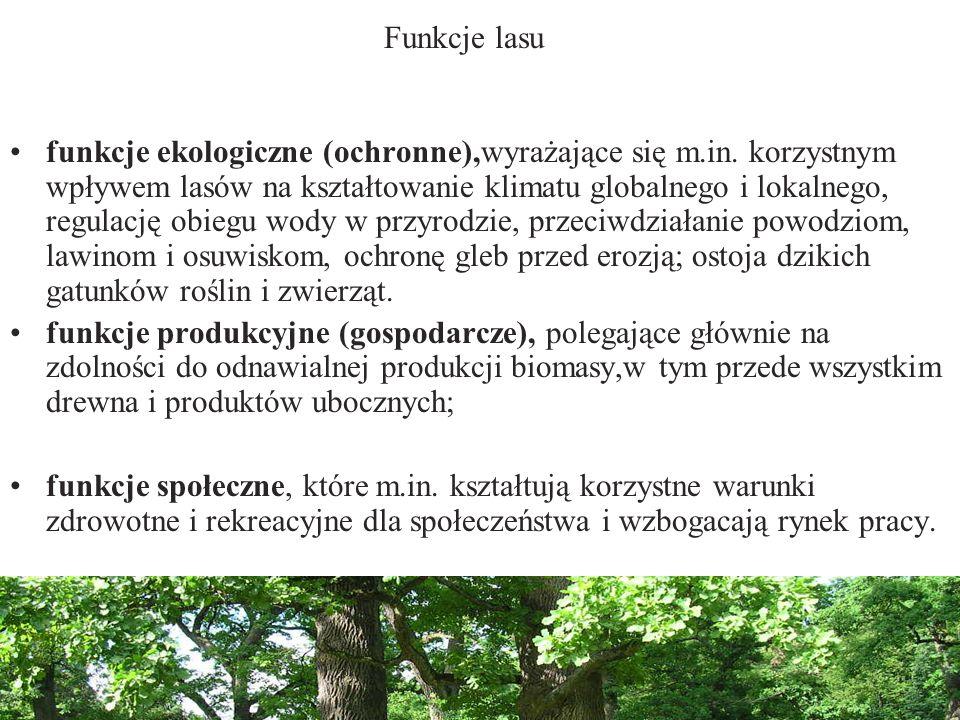 Funkcje lasu funkcje ekologiczne (ochronne),wyrażające się m.in. korzystnym wpływem lasów na kształtowanie klimatu globalnego i lokalnego, regulację o