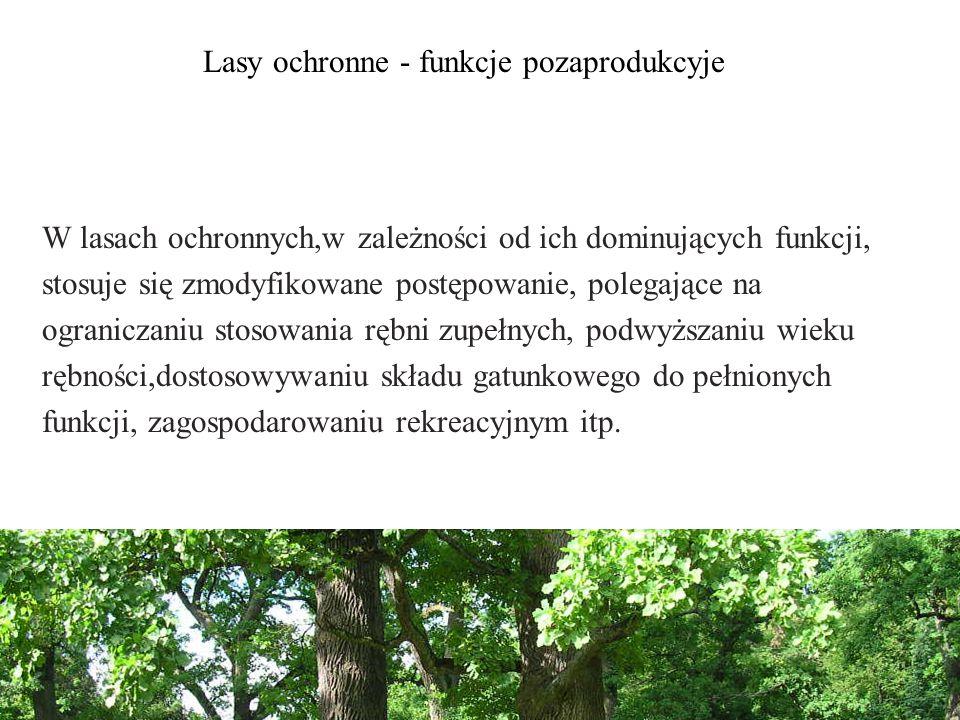 W lasach ochronnych,w zależności od ich dominujących funkcji, stosuje się zmodyfikowane postępowanie, polegające na ograniczaniu stosowania rębni zupełnych, podwyższaniu wieku rębności,dostosowywaniu składu gatunkowego do pełnionych funkcji, zagospodarowaniu rekreacyjnym itp.