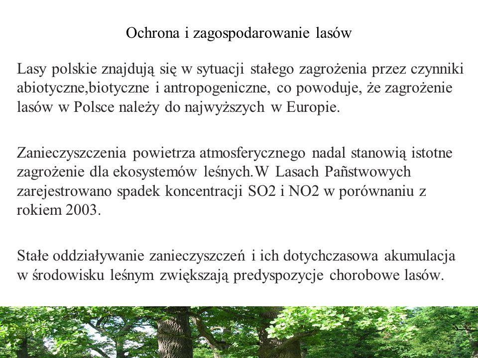 Ochrona i zagospodarowanie lasów Lasy polskie znajdują się w sytuacji stałego zagrożenia przez czynniki abiotyczne,biotyczne i antropogeniczne, co pow