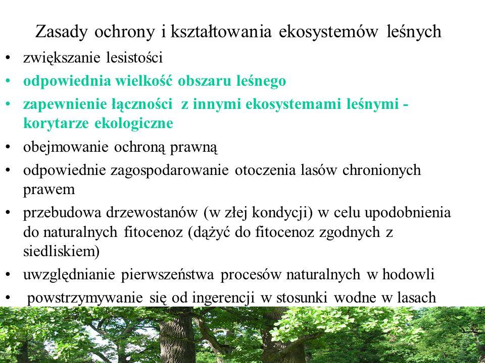Zasady ochrony i kształtowania ekosystemów leśnych zwiększanie lesistości odpowiednia wielkość obszaru leśnego zapewnienie łączności z innymi ekosystemami leśnymi - korytarze ekologiczne obejmowanie ochroną prawną odpowiednie zagospodarowanie otoczenia lasów chronionych prawem przebudowa drzewostanów (w złej kondycji) w celu upodobnienia do naturalnych fitocenoz (dążyć do fitocenoz zgodnych z siedliskiem) uwzględnianie pierwszeństwa procesów naturalnych w hodowli powstrzymywanie się od ingerencji w stosunki wodne w lasach