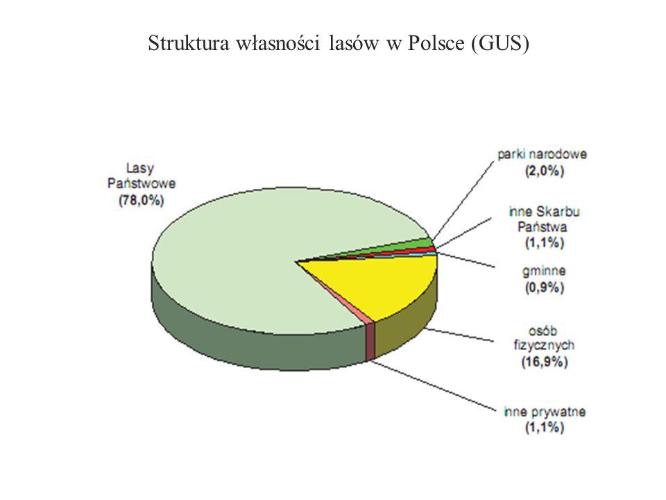 Zróżnicowanie warunków siedliskowych Zróżnicowanie warunków występowania lasów w Polsce obrazuje regionalizacja przyrodniczo-leśna, uwzględniająca utwory geologiczne, warunki klimatyczne, typy krajobrazu naturalnego i lasotwórczą rolę gatunków drzewiastych.