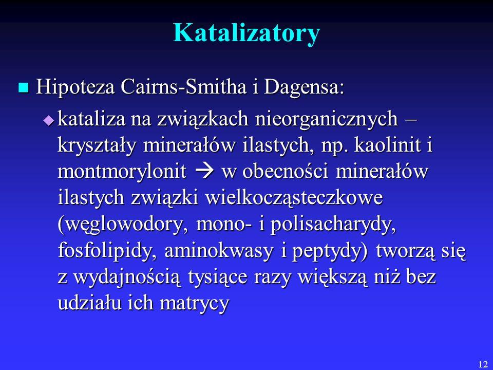 12 Katalizatory Hipoteza Cairns-Smitha i Dagensa: Hipoteza Cairns-Smitha i Dagensa:  kataliza na związkach nieorganicznych – kryształy minerałów ilastych, np.