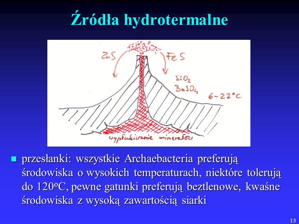 13 Źródła hydrotermalne przesłanki: wszystkie Archaebacteria preferują środowiska o wysokich temperaturach, niektóre tolerują do 120 o C, pewne gatunki preferują beztlenowe, kwaśne środowiska z wysoką zawartością siarki przesłanki: wszystkie Archaebacteria preferują środowiska o wysokich temperaturach, niektóre tolerują do 120 o C, pewne gatunki preferują beztlenowe, kwaśne środowiska z wysoką zawartością siarki