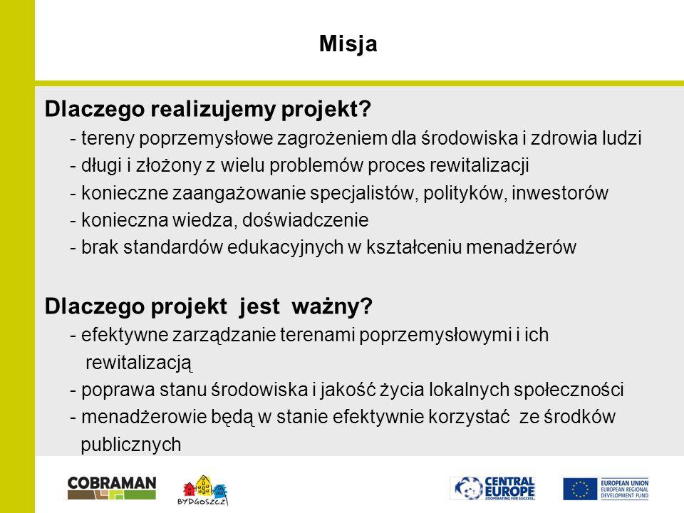 Misja Dlaczego realizujemy projekt.