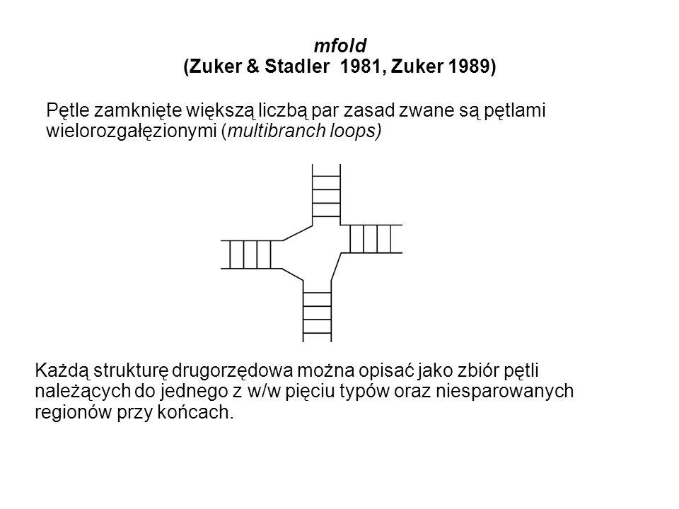 mfold (Zuker & Stadler 1981, Zuker 1989) Pętle zamknięte większą liczbą par zasad zwane są pętlami wielorozgałęzionymi (multibranch loops) Każdą struk