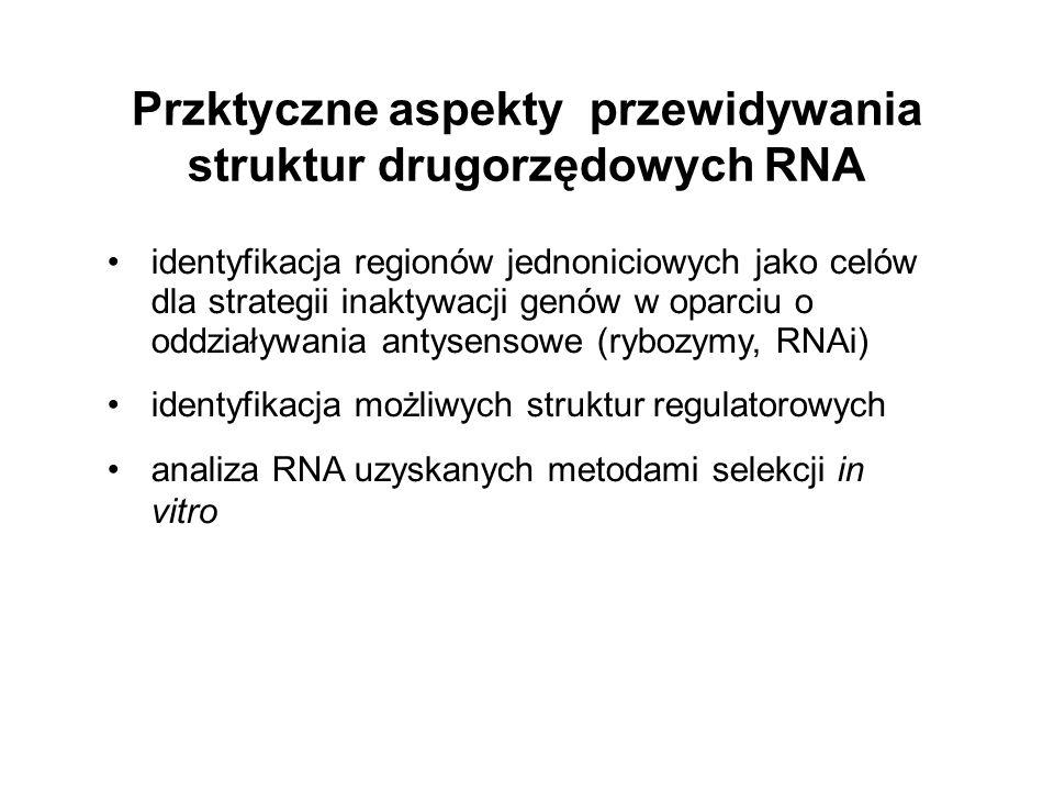 identyfikacja regionów jednoniciowych jako celów dla strategii inaktywacji genów w oparciu o oddziaływania antysensowe (rybozymy, RNAi) identyfikacja