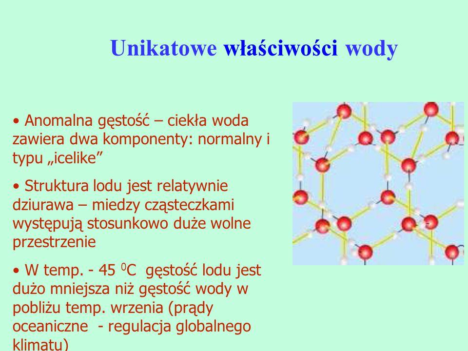 """Unikatowe właściwości wody Anomalna gęstość – ciekła woda zawiera dwa komponenty: normalny i typu """"icelike"""" Struktura lodu jest relatywnie dziurawa –"""