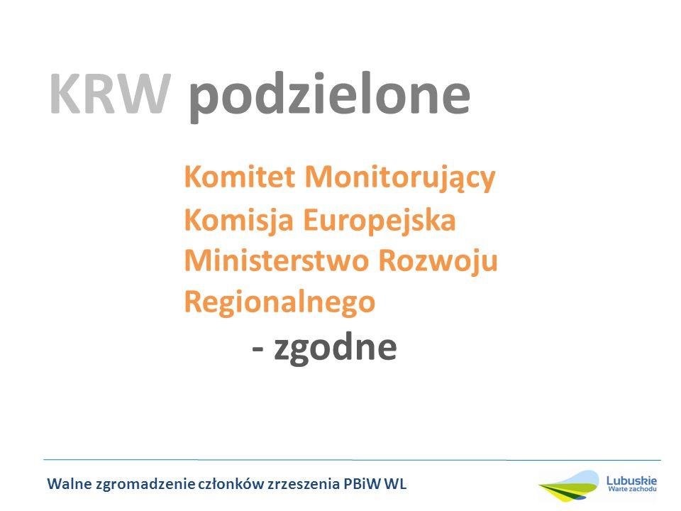 KRW podzielone Komitet Monitorujący Komisja Europejska Ministerstwo Rozwoju Regionalnego - zgodne Walne zgromadzenie członków zrzeszenia PBiW WL