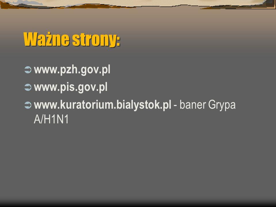 Ważne strony:  www.pzh.gov.pl  www.pis.gov.pl  www.kuratorium.bialystok.pl - baner Grypa A/H1N1