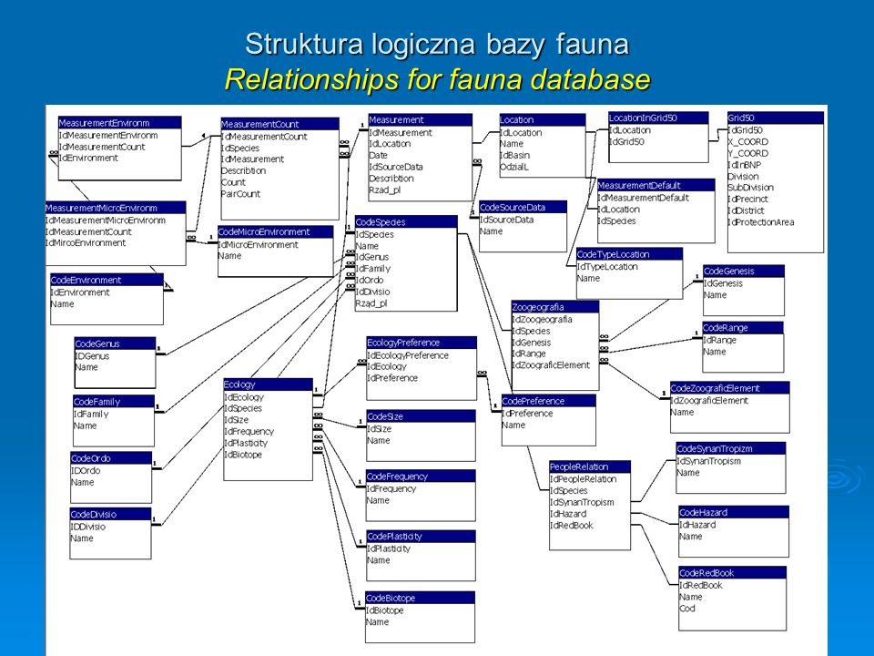 Struktura logiczna bazy fauna Relationships for fauna database