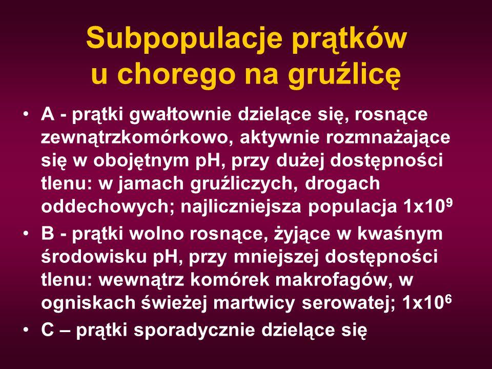 Subpopulacje prątków u chorego na gruźlicę A - prątki gwałtownie dzielące się, rosnące zewnątrzkomórkowo, aktywnie rozmnażające się w obojętnym pH, pr